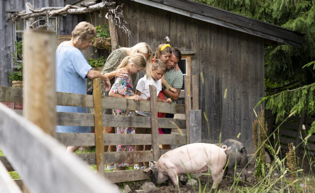 Sommer i Prøysen Foto Visit Innlandet/ Hans Haug