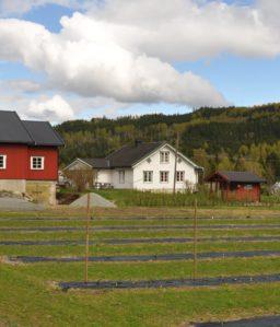 Fremstad gård